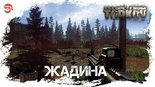 �������� ���� Жадина [Escape from Tarkov] ������