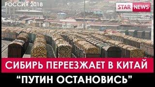 СИБИРЬ ПЕРЕЕЗЖАЕТ В КИТАЙ! 2018 Россия