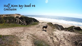German Shepherd at the Beach Part 4 of 4 Walking our dog at the beach