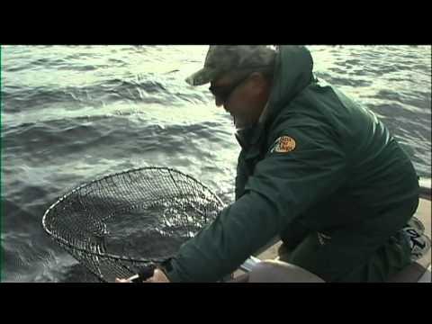 Simply Fishing 2112 The Monster Muskie Hunt At Stork Lake Pt2