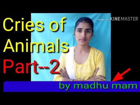 Cries Of Animals/in English/by Madhu Mam