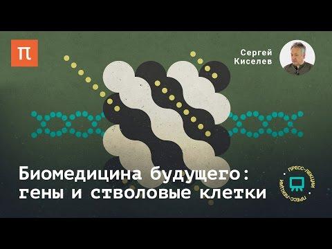Биомедицина будущего: гены и стволовые клетки Сергей Киселев