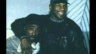 2Pac-Uppercut[Pictures with Mike Tyson]