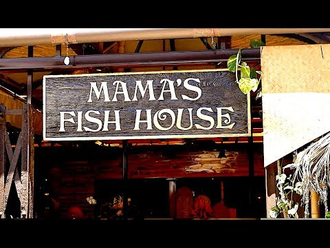 Mama's Knows Best - Last Day In Wailea
