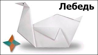 Оригами лебедь: видео мастер-класс