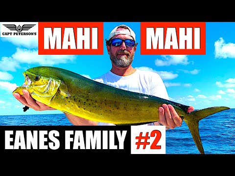 Mahi Mahi Fishing - St George Island, FL