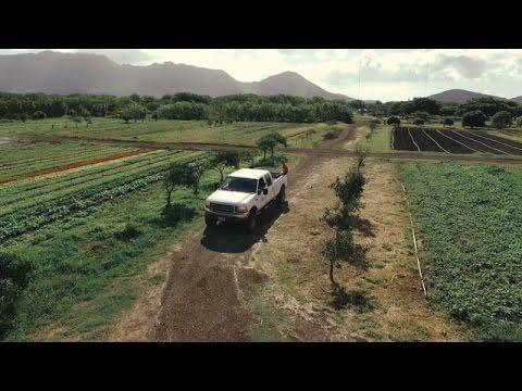 Island Earth (Trailer)