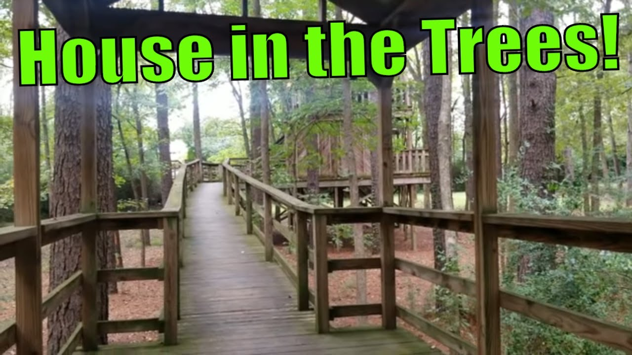 talent-found-in-the-woods-tour-treehouse-big-enough-for-adults
