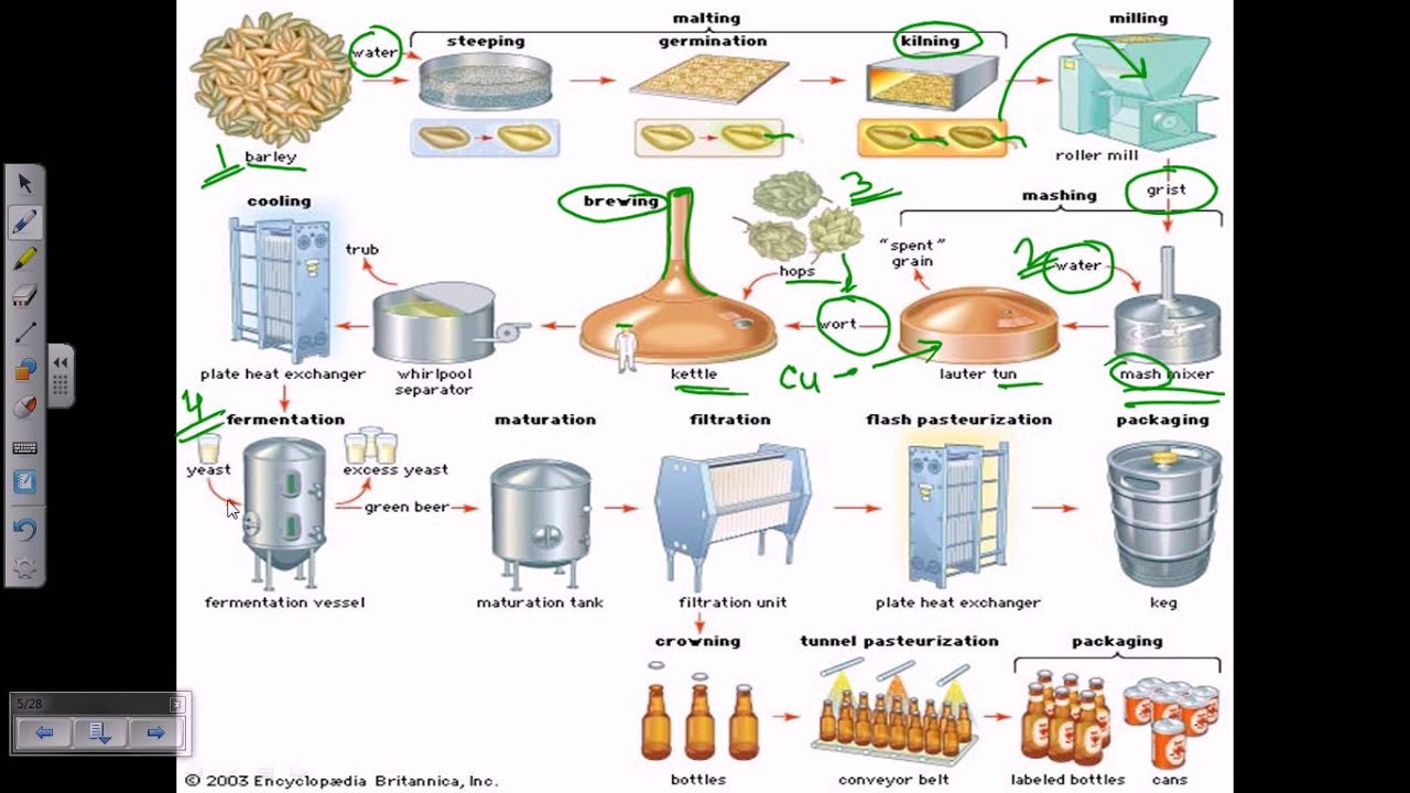 Beer production overview youtube beer production overview pooptronica
