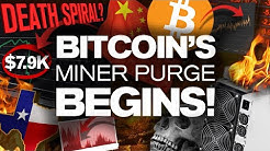 WARNING! Big DIP Soon!? Why? The BTC Miner Purge!