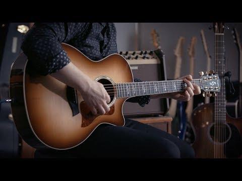 Martin GPC & Taylor 414ce Acoustics +  Fishman Loudbox Combo Amp | Demo With Jared Scharff