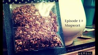 Herbal Healing:  Episode 1 # Mugwort