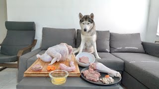 Leaving My Husky alone with a Whole Turkey Food Table for Thanksgiving!