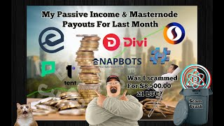 My Passive Income & Masternode Payouts For April, Was I Scammed Out Of $8500.00?