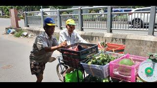 Thương anh trai tật nguyền đẩy cha già 81 tuổi đi bán trái cây, tối đến lượm ve chai