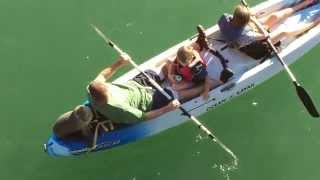 Sea Lion joins family on Santa Barbara kayak - ORIGINAL VIDEO