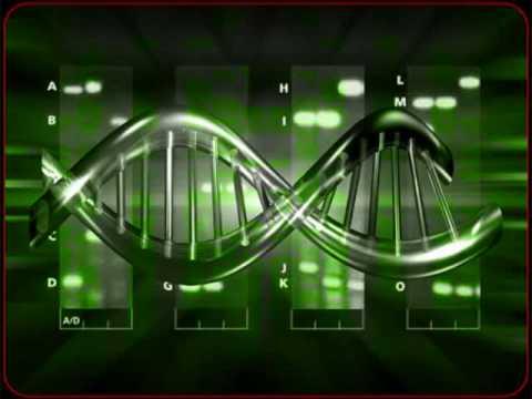 Origen (8va parte) Pleyadianos Reptilianos Nuevo Orden Mundial Humanidad Influenza h1n1 2012