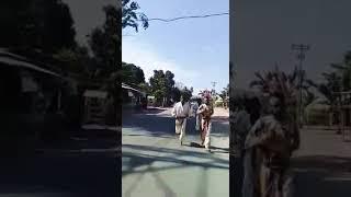 martial arts KORK in indonesia
