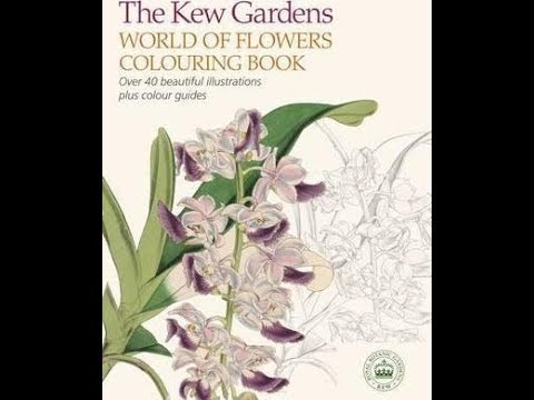 the-kew-gardens-world-of-flowers-colouring-book---flip-through