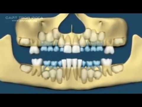 Как заговорить зубы человеку