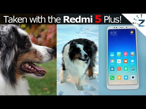 Xiaomi Redmi 5 Plus Camera Review! Photo & Video Samples Included! 9% Discount Inside!