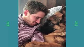 Cute Cats & Dogs always make you laugh # 56 Funny Cat Dog