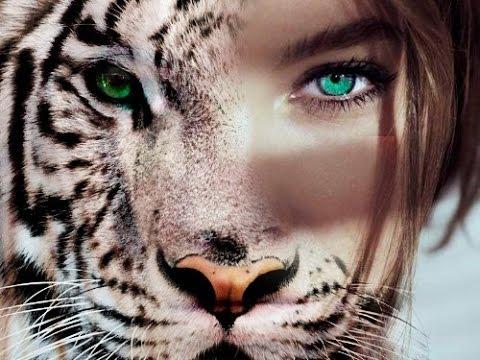 Картинки тигрицы девушка на аву