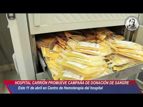 22  CAMPAÑA BANCO DE SANBRE