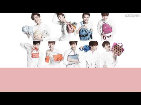 || KARAOKE - THAISUB || Tender Love (Korean Version) - EXO