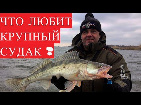 Рыбалка в Астрахани в феврале