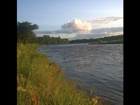 Saving the Gulf of Mexico: Cleaning Up Illinois Rivers and Lakes