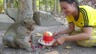 Wow! Konthea surprise birthday SP, She brings watermelon cake to Sp,He is three years old. 03.28.20