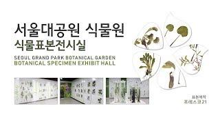 서울대공원식물원 식물표본전시실 (표본제작_프레스코21)