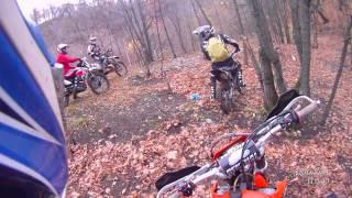 Осенние покатушки в лесу