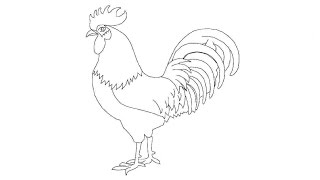 How to Draw a Cock / Как нарисовать петуха(Create Your Project - http://www.shutterstock.com/video/gallery/4292563/ Создай свой проект - http://www.shutterstock.com/video/gallery/4292563/, 2015-04-30T11:28:51.000Z)