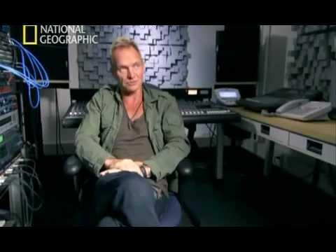 MI CEREBRO MUSICAL. Sting