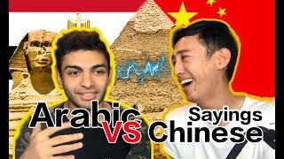 Arabic Proverbs VS Chinese Proverbs, so funny to compare!