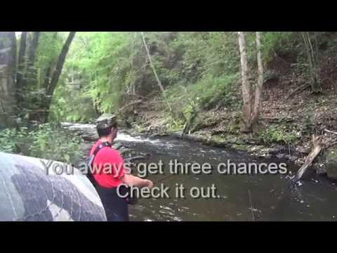 Luxembourg trout fishing - end of 2014 season