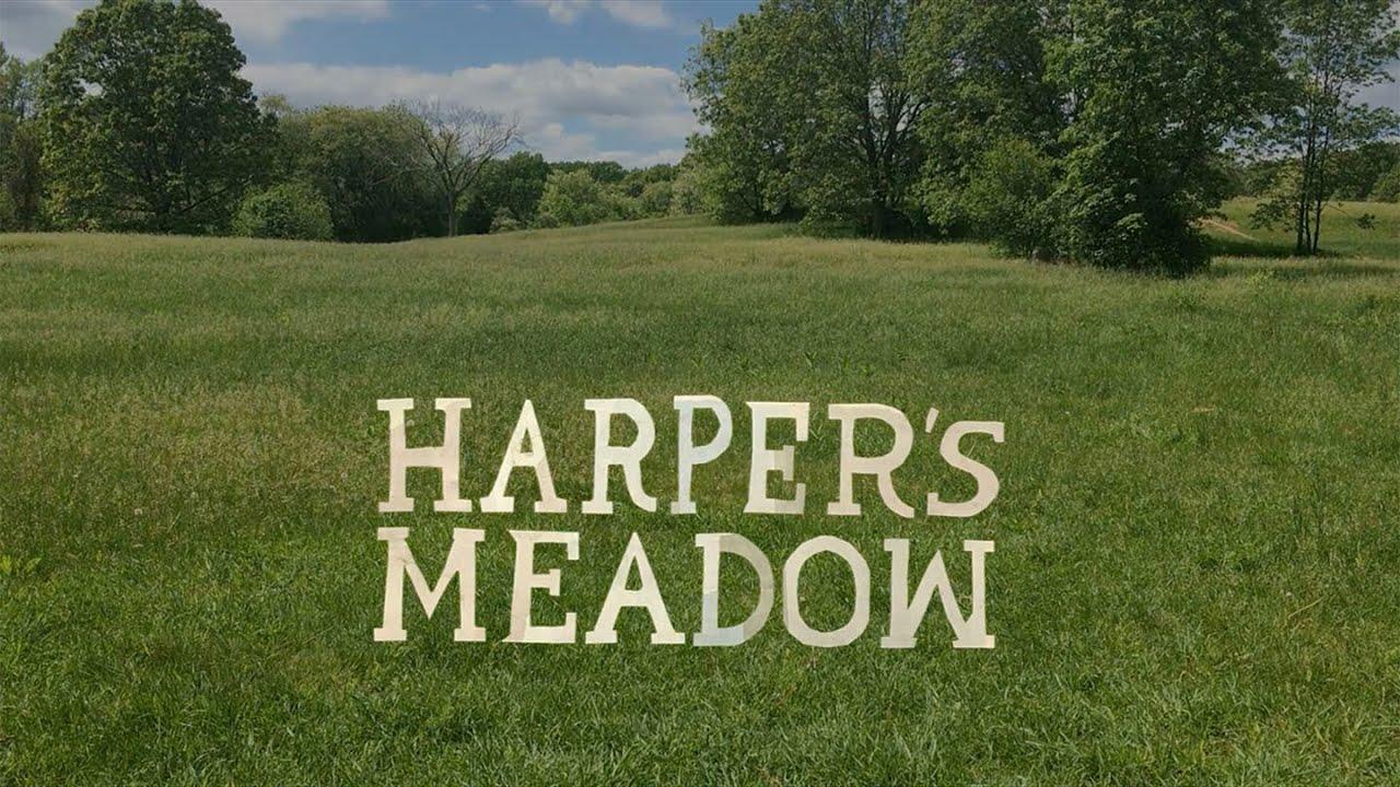 "WHS students produce original film ""Harper's Meadow"""