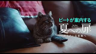 『夏への扉 ―キミのいる未来へ―』スペシャル映像【ピート(猫) 案内編】