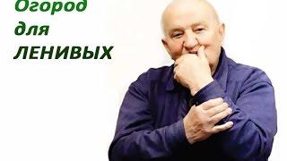 Б.А.Бублик - Огород для ленивых