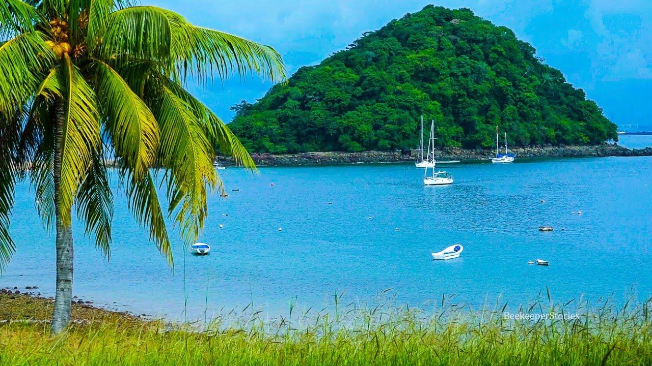 Картинки по запросу taboga island panama