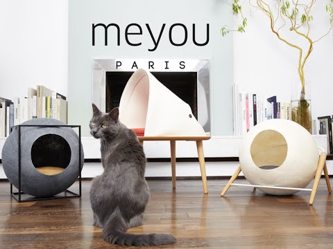 Meyou: Kickstarter Crowdfunding