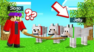 HIDING As A PET DOG In GUESS WHO! (Minecraft)