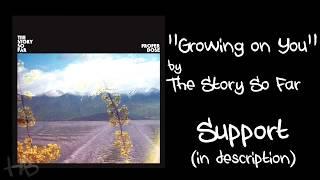 The Story So Far - Growing On You Lyrics