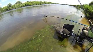 Рыбалка на Москва реке.  Чулково. Поплавочная удочка
