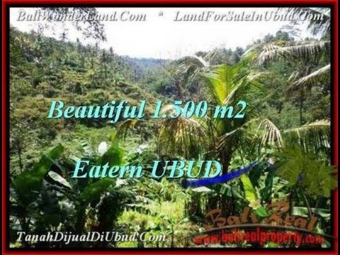 FOR SALE Affordable LAND IN Ubud BALI TJUB503