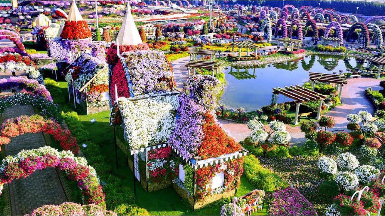 Дубай miracle garden купить гостиницу в германии