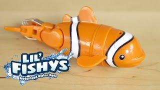 Lil'Fishys, interaktywne rybki, TM Toys