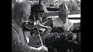 Willie Nelson - Down Home 1997 - San Antonio Rose